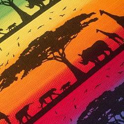 fascia lennylamb rainbow safari particolare